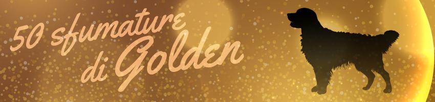 Golden Retriever Growth Chart | Official Golden Retriever
