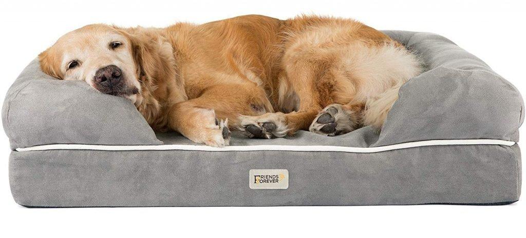 Your Guide to Buying a Cosy and Comfortable Bed for Your Dog